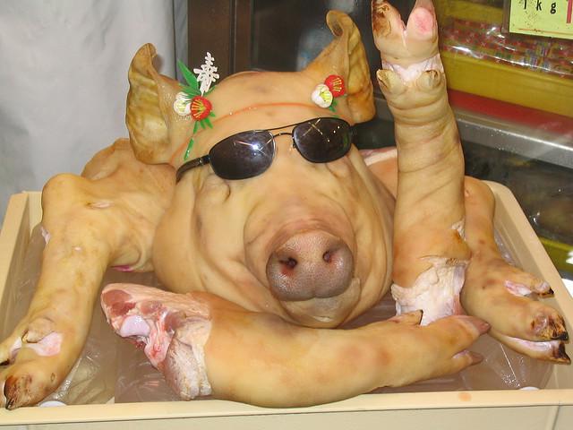 Oink!  (Photo credit: Rumpleteaser)
